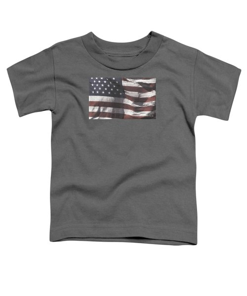 Historical Documents On Us Flag Toddler T-Shirt
