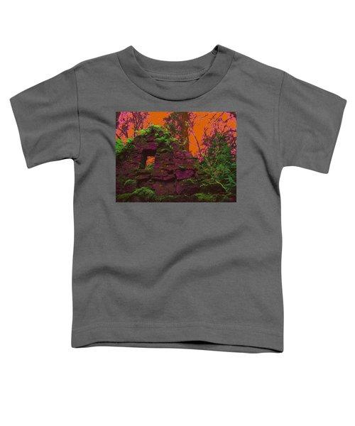 Anarchy's Playhouse Toddler T-Shirt
