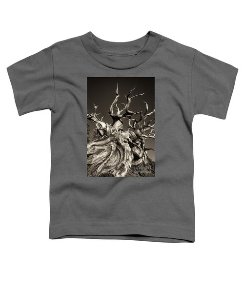 Ancient Bristlecone Pine In Black And White Toddler T-Shirt
