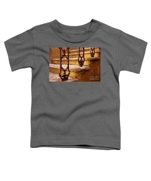 Ancient Steps Toddler T-Shirt
