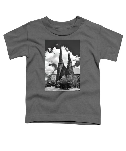 Ani's Place  15257 Toddler T-Shirt