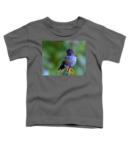 Annas Hummingbird Toddler T-Shirt