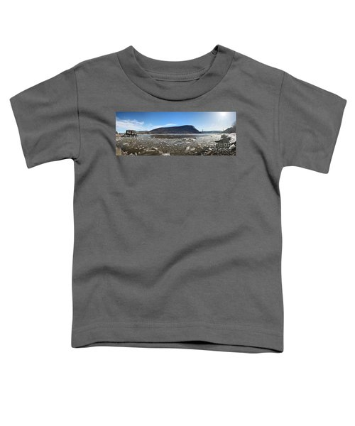 Anthony's Nose Toddler T-Shirt