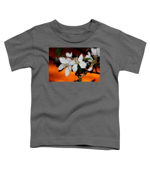 Apple Blossom Sunrise I Toddler T-Shirt