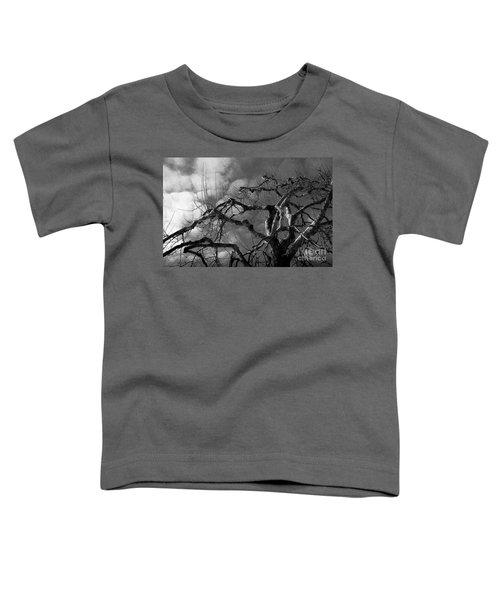 Apple Tree Bw Toddler T-Shirt