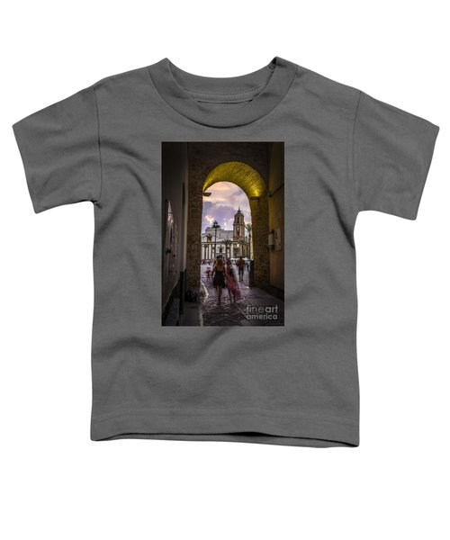 Arc Of The Rose Cadiz Spain Toddler T-Shirt
