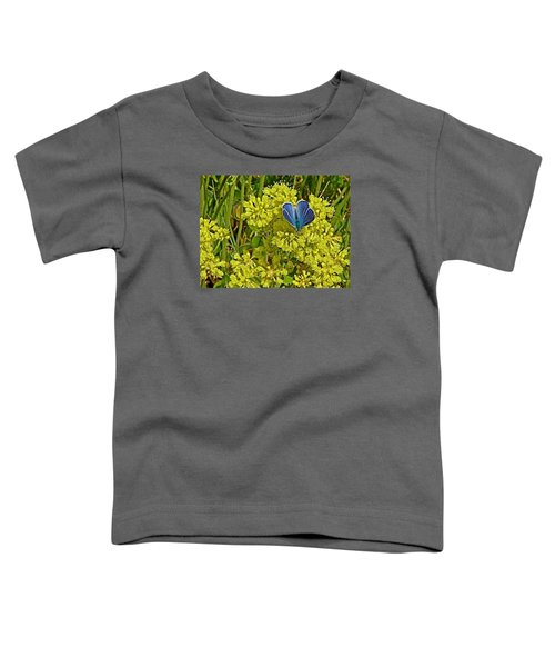 Arctic Blue Butterfly On Sulfur Flower In Fort Running Bear Near Mountain Home-idaho    Toddler T-Shirt