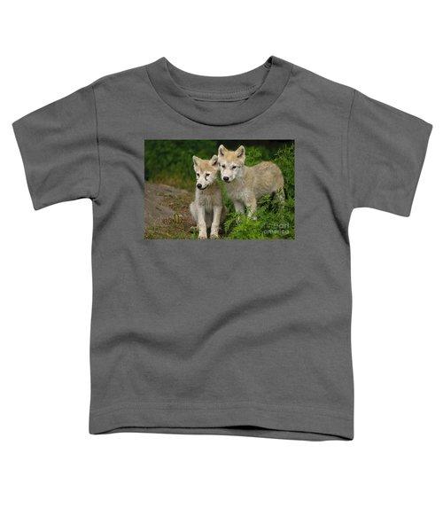 Arctic Wolf Puppies Toddler T-Shirt