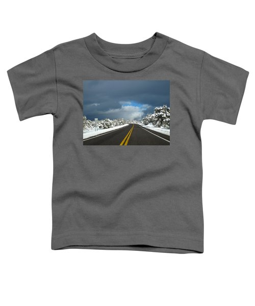 Arizona Snow 1 Toddler T-Shirt