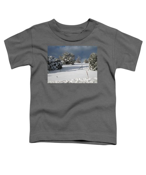 Arizona Snow 3 Toddler T-Shirt