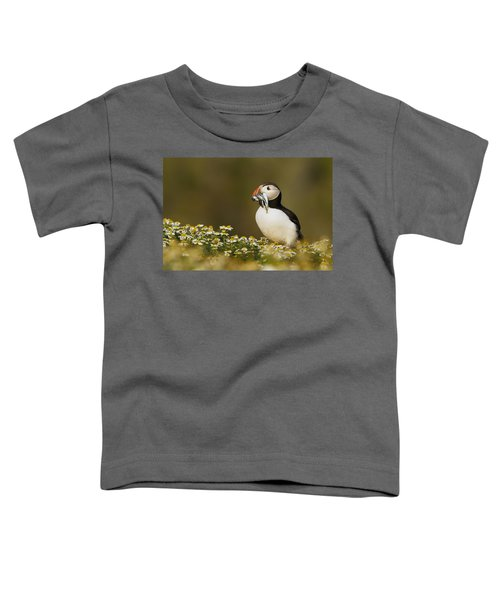 Atlantic Puffin Carrying Fish Skomer Toddler T-Shirt by Sebastian Kennerknecht