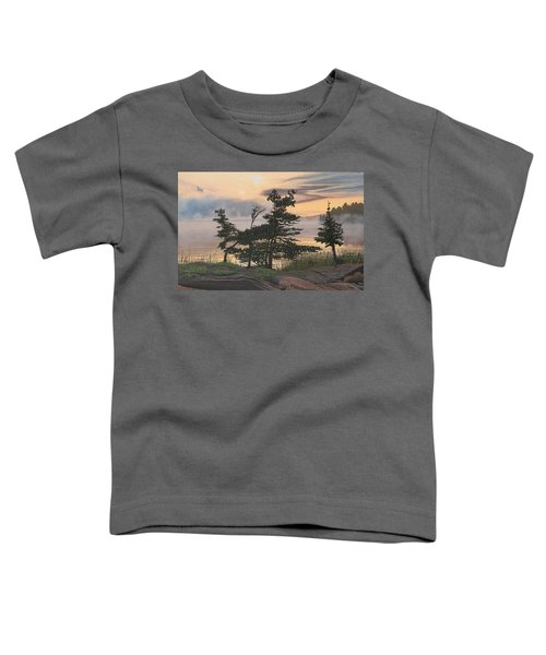 Auburn Evening Toddler T-Shirt