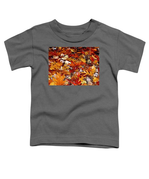 Autumn Leaves On The Ground In New Hampshire - Bright Colors Toddler T-Shirt