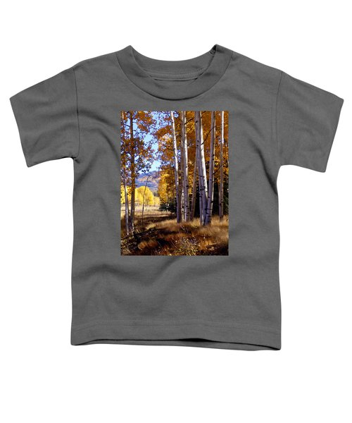 Autumn Paint Chama New Mexico Toddler T-Shirt
