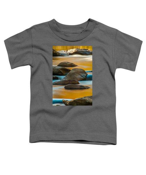 Autumn Stream Toddler T-Shirt