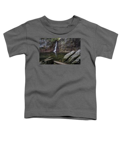 Autumn Swirls Toddler T-Shirt by James Dean