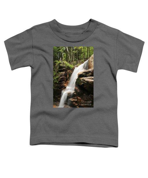 Avalanche Falls Toddler T-Shirt