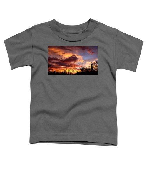 Az Monsoon Sunset Toddler T-Shirt
