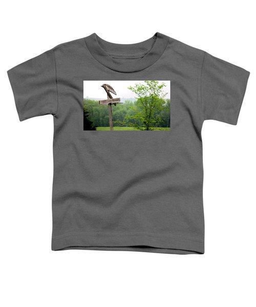 B-ball History Toddler T-Shirt