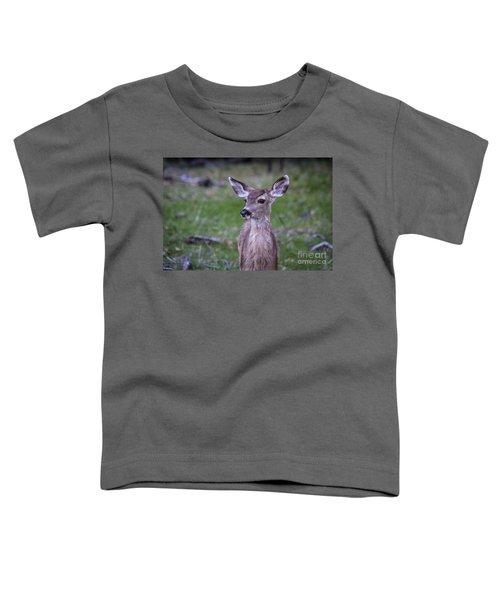 Baby Deer Toddler T-Shirt