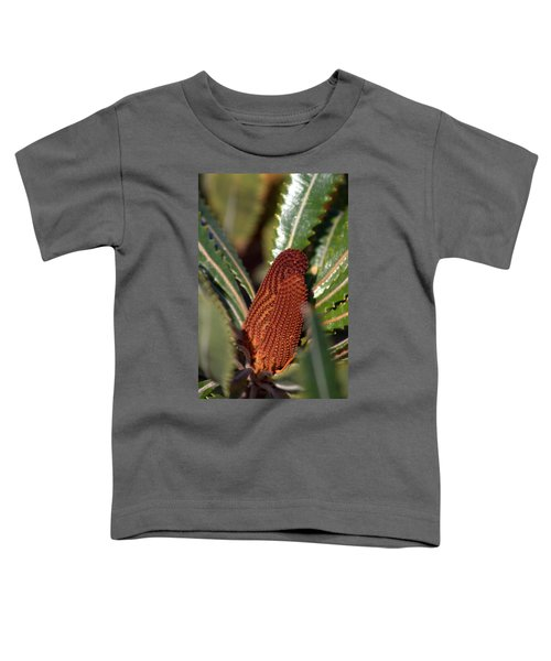 Toddler T-Shirt featuring the photograph Banksia by Miroslava Jurcik