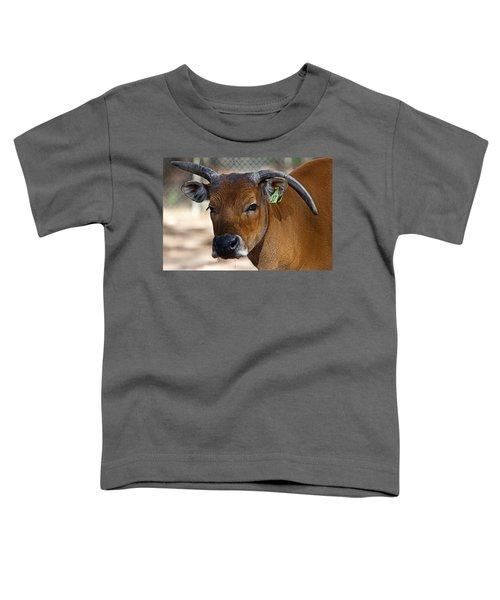 Banteng Girl Toddler T-Shirt by Miroslava Jurcik