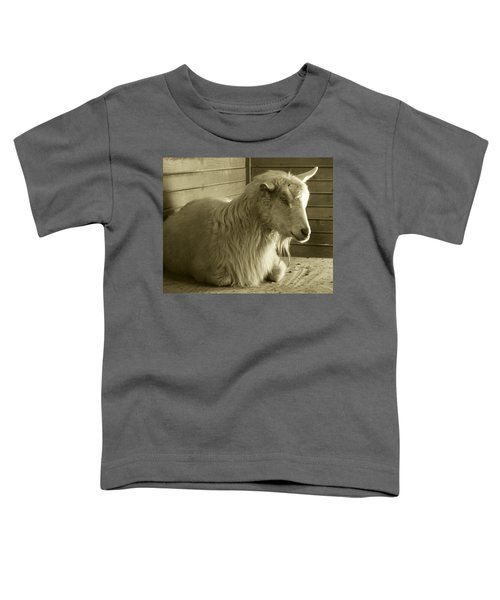 Barn Life Toddler T-Shirt