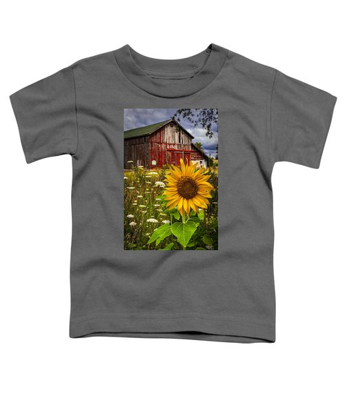 Barn Meadow Flowers Toddler T-Shirt