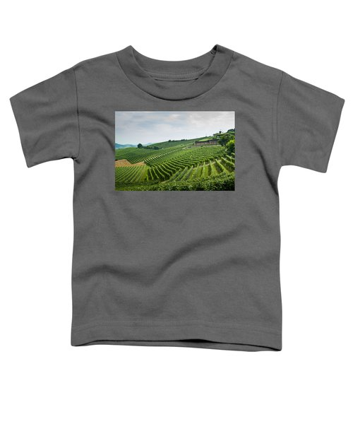 Barolo Toddler T-Shirt by Alex Lapidus