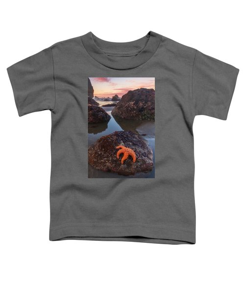 Battle Rock Sunrise Toddler T-Shirt
