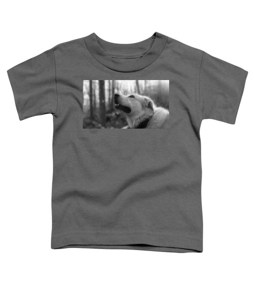 Bear Tooth Not Camera Shy Toddler T-Shirt