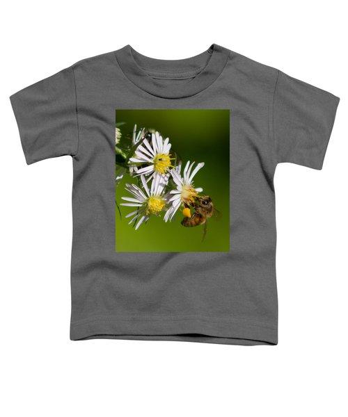 Bee Harvest Toddler T-Shirt