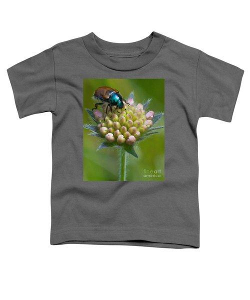 Beetle Sitting On Flower Toddler T-Shirt