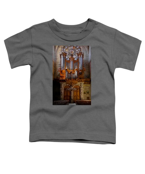 Beziers Pipe Organ Toddler T-Shirt