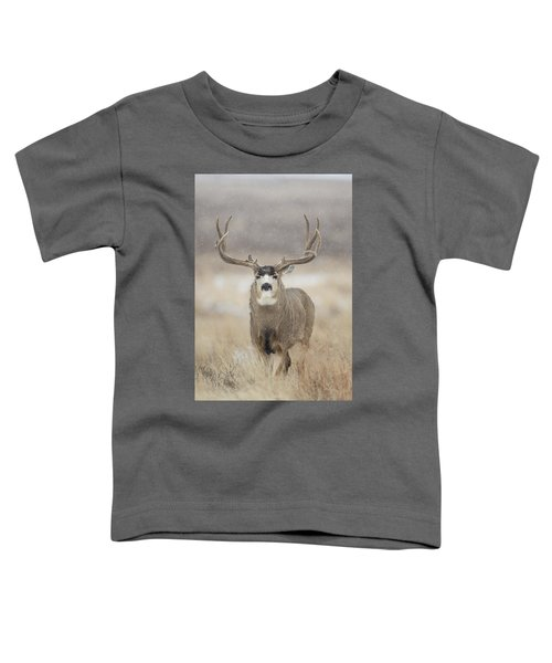 Big Sky On Snowy Day Toddler T-Shirt
