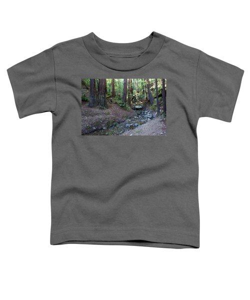 Bigfoot On Mt. Tamalpais Toddler T-Shirt