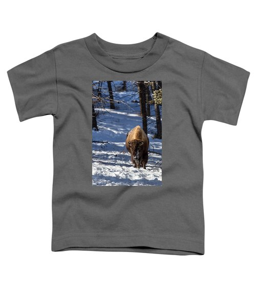 Bison In Winter Toddler T-Shirt