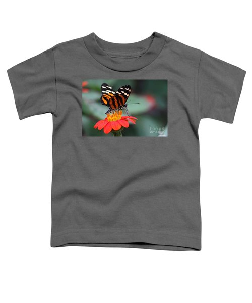 Black And Brown Butterfly On A Red Flower Toddler T-Shirt