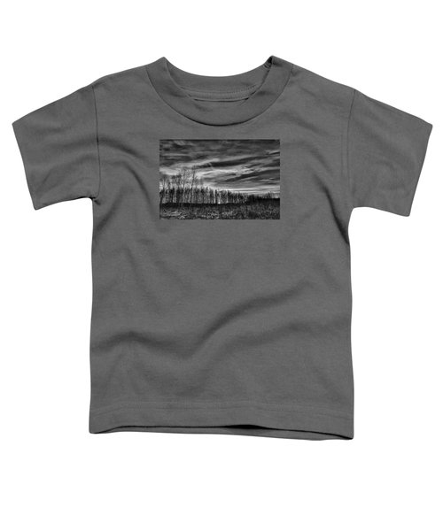 Black And White Grongarn Sky December 16 2014 Colouring The Clouds  Toddler T-Shirt
