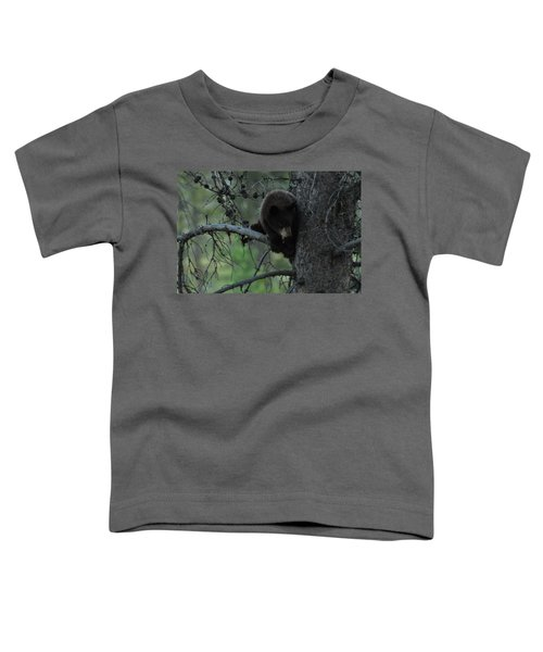 Black Bear Cub In Tree Toddler T-Shirt