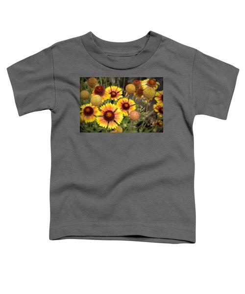 Blanket Flowers  Toddler T-Shirt