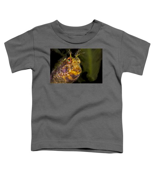 Blenny In Deep Thought Toddler T-Shirt