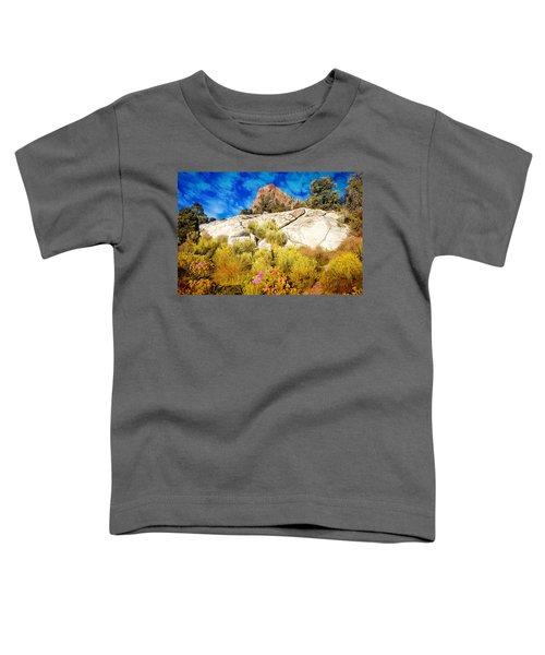 Blooming Nevada Desert Near Ely Toddler T-Shirt