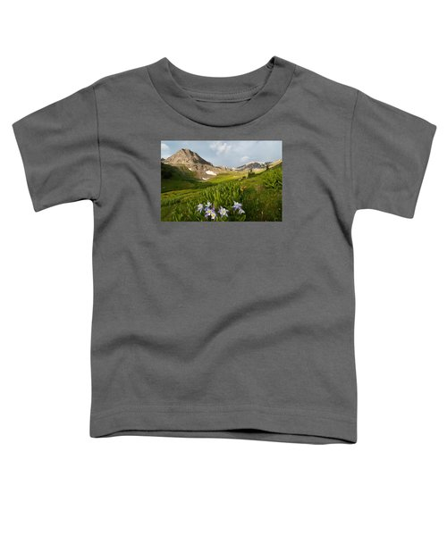 Handie's Peak And Blue Columbine On A Summer Morning Toddler T-Shirt