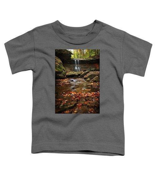 Blue Hen Falls In Autumn Toddler T-Shirt