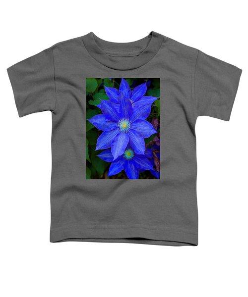 Blue On Blue Toddler T-Shirt