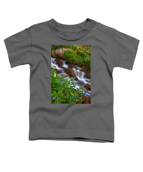 Bluebell Creek Toddler T-Shirt