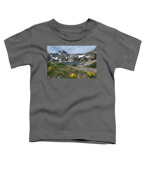 Bluebird Lake - Colorado Toddler T-Shirt
