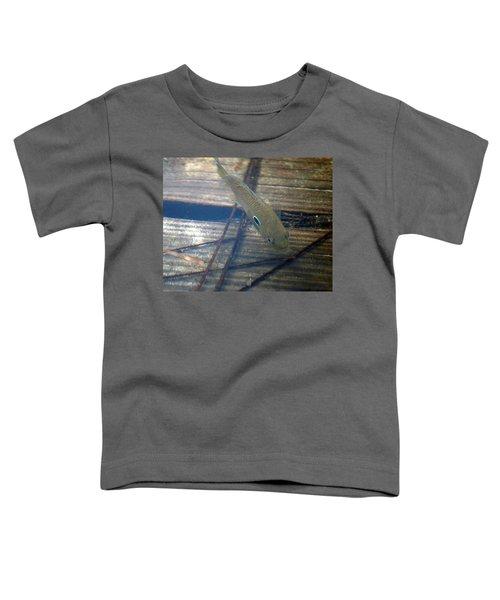 Bluegill On The Hunt Toddler T-Shirt
