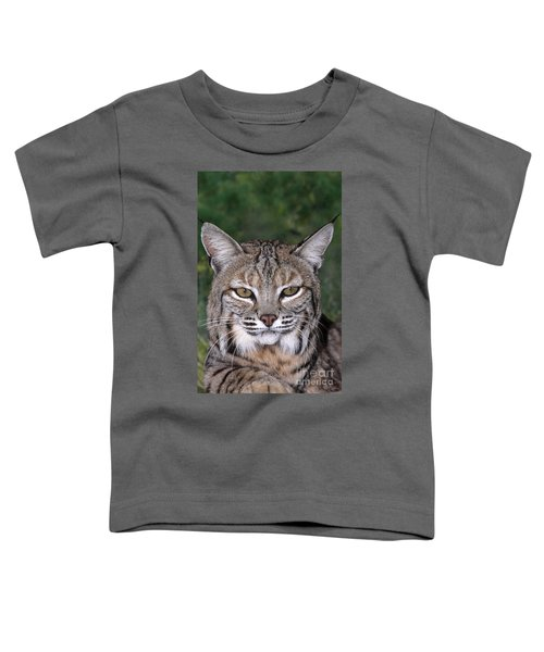 Bobcat Portrait Wildlife Rescue Toddler T-Shirt